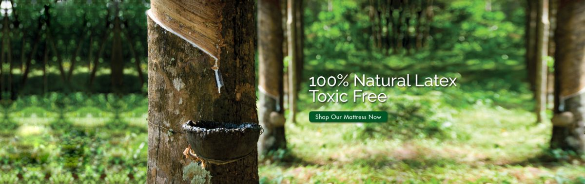 getha-banner-natural-latex-toxic-free.jpg